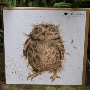 What A Hoot – Greeting Card