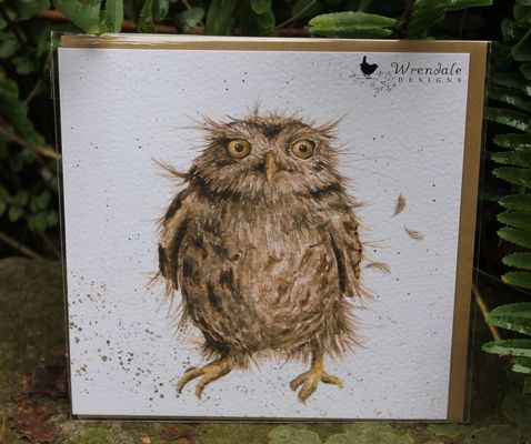 What A Hoot - Greeting Card