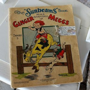 Ginger Meggs Comic Book