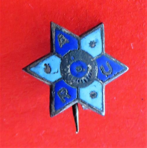 masonic star morpeth antique centre hunter valley australian world war one two badge pin tinnie allies russia comfort fund red cross soldier legacy ANZAC