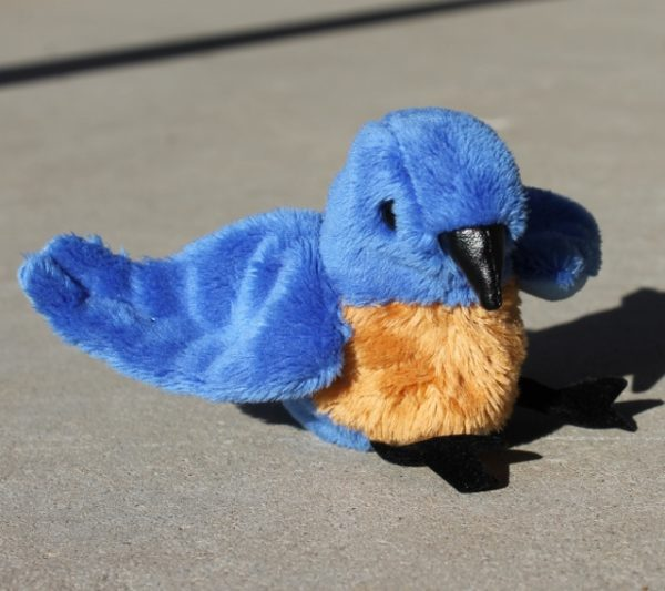 morpeth gift gallery hunter valley folkmanis finger puppet bird swallow blue tit finch