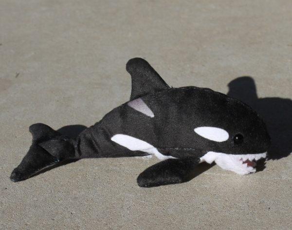 morpeth gift gallery hunter valley folkmanis finger puppet orca whale killer willy willie free