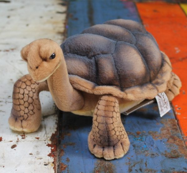 morpeth gift gallery hunter valley hansa plush creations bird animal insect tortoise