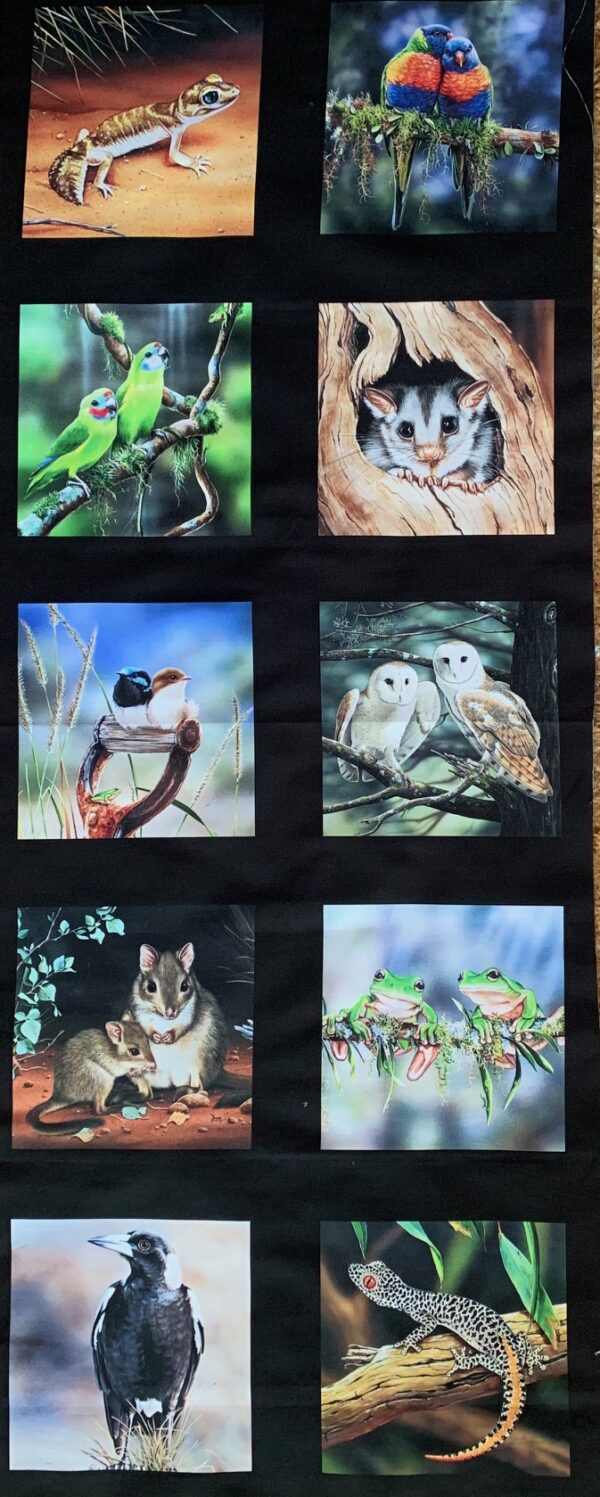 Morpeth Gallery Campbells Store Fabric panels new wildlife art Natalie Jane Parker