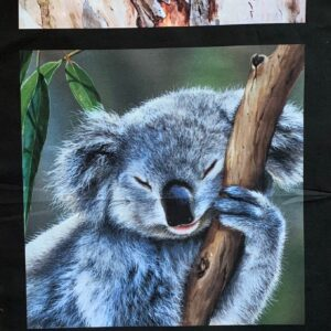 Fabric Panel 3 images Possum, Koala, Kookaburra
