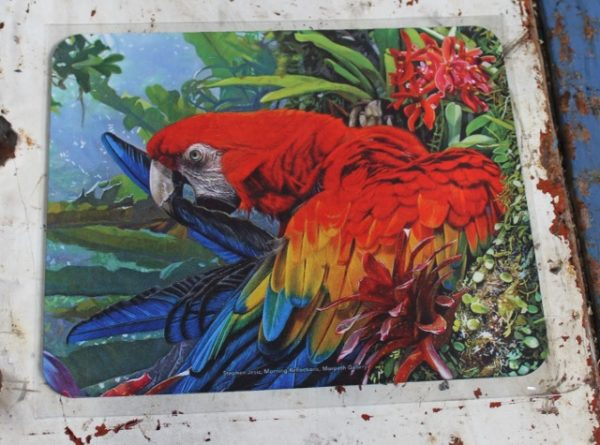 morpeth gift gallery hunter valley computer mouse mat pad stephen jesic morning reflections blue red yellow gold macaw parrot