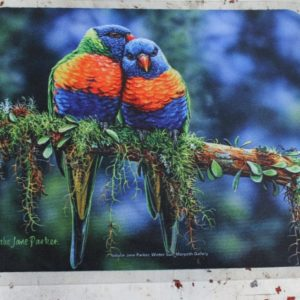 morpeth gift gallery hunter valley computer mouse mat pad winter sun rainbow lorikeet australian native birds