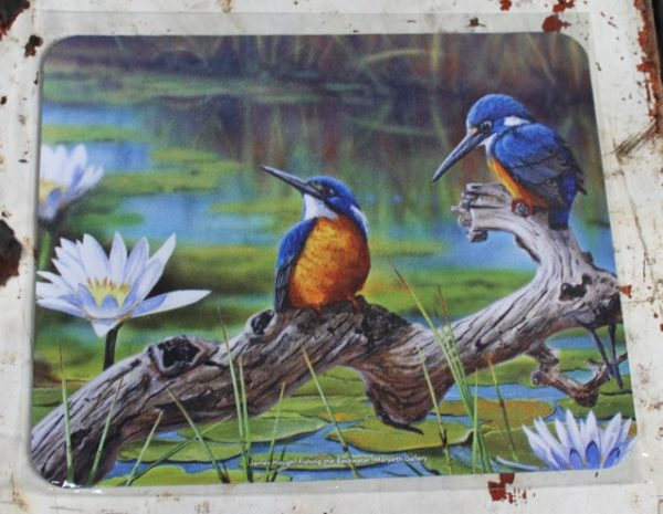 morpeth gift gallery hunter valley computer mouse mat pad james hough kingfisher fishing the backwater australian native bird